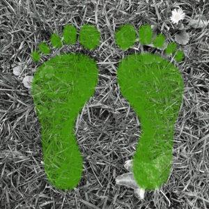 Walkshop - De aarde onder je voeten