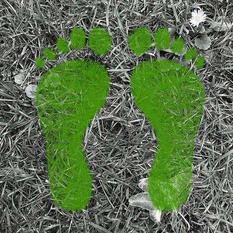 Walkshop – De aarde onder je voeten